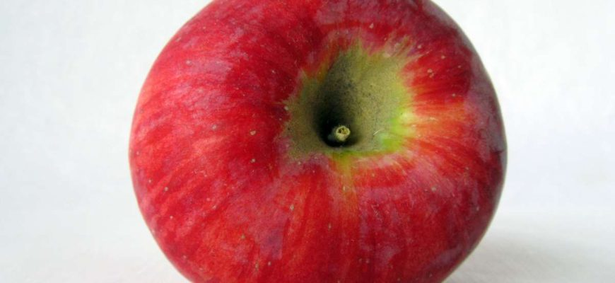 яблоко сорта кортланд